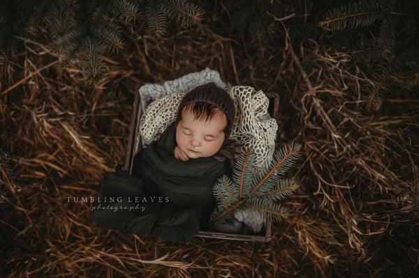 Image of 2021 Full Newborn Session {$150}