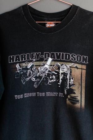 Image of 2004 Harley Davidson 'Flaming Gorge' Tee
