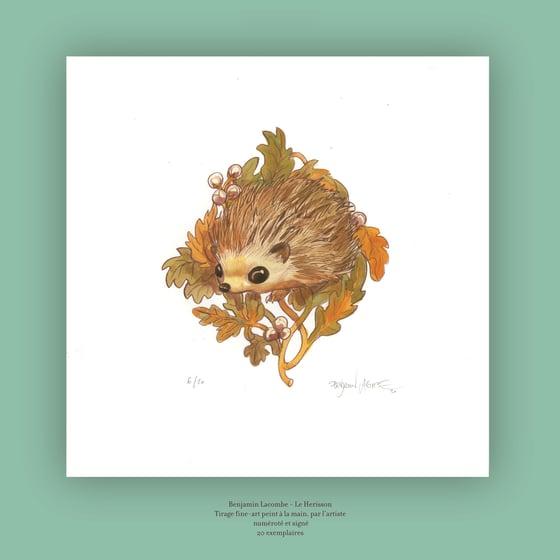 Image of Hedgehog - Art Edition