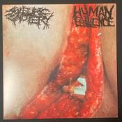 "Image of Sulfuric Cautery / Human Effluence - Split 12"""