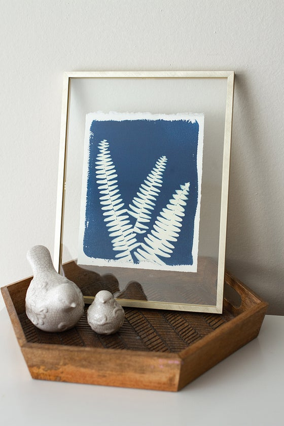 Image of Original - Framed Deckled Edge Fern