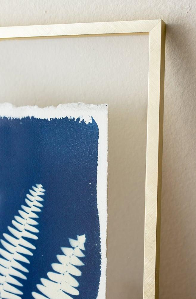 Image of Original - Framed Deckled Edge Fern