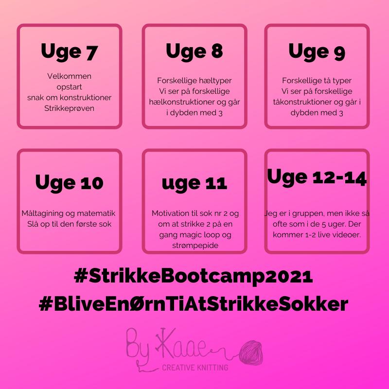 Image of Strikke Bootcamp 2021