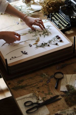 Image of Handmade Botanical/Flower Press