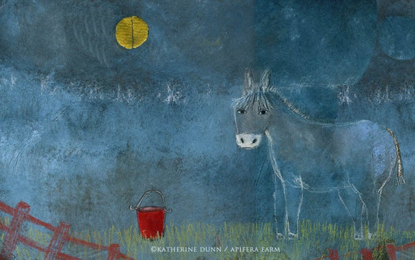 Image of Little Donkey with his red bucket