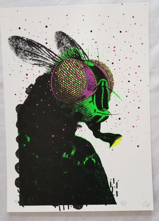 Image of Paul Insect Artist Proof Print from Pictures on Walls POW