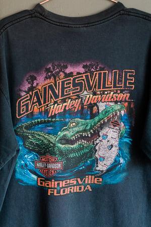 Image of Vintage 00's Harley Davidson Gainsville, Florida