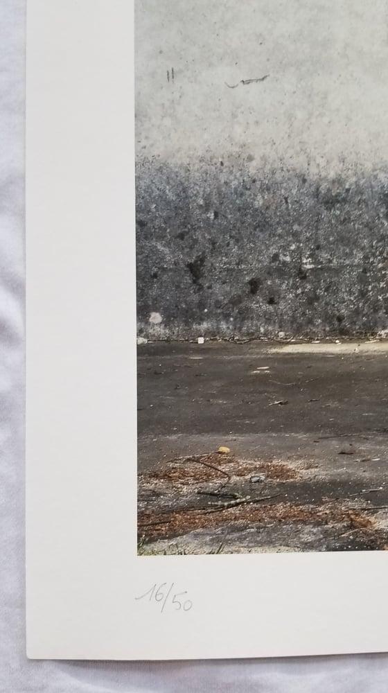 Image of Murmure Street Picking 02 Print