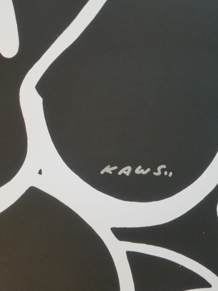 Image of Kaws Unknown
