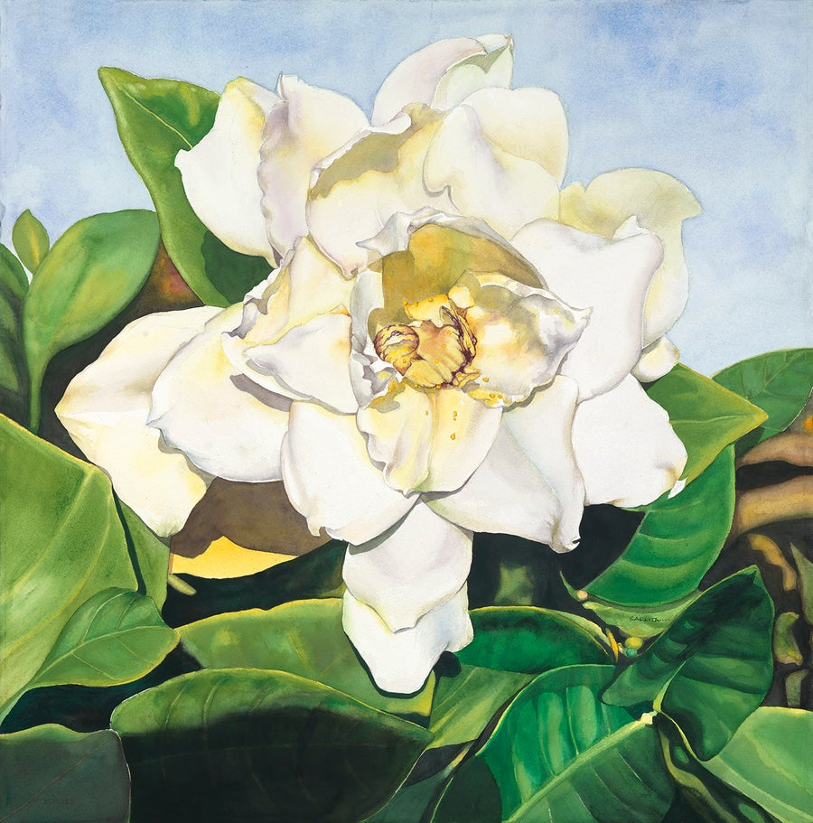 Image of GARDENIA (Unframed)