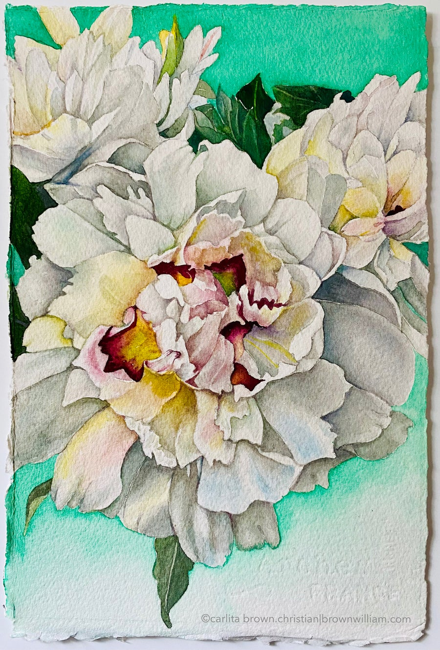 Image of WHITE PEONIES (Unframed)  Prints coming soon!