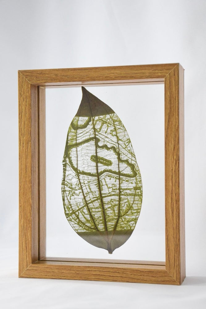 Image of Customised Framed Leaf Cutout