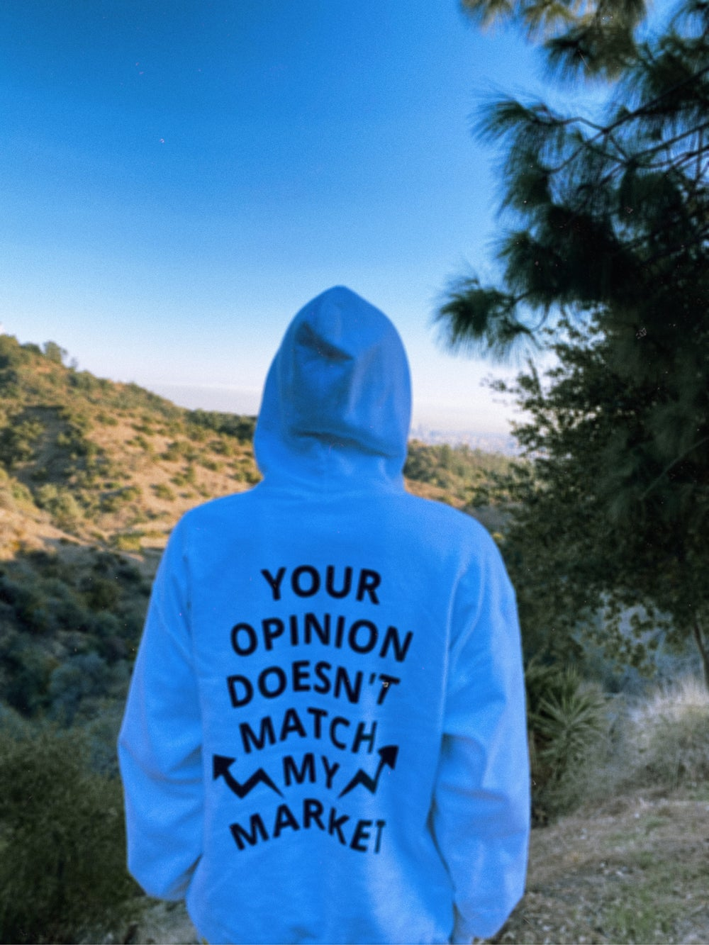 Image of Your Opinion Doesn't Match My Market Hoodie