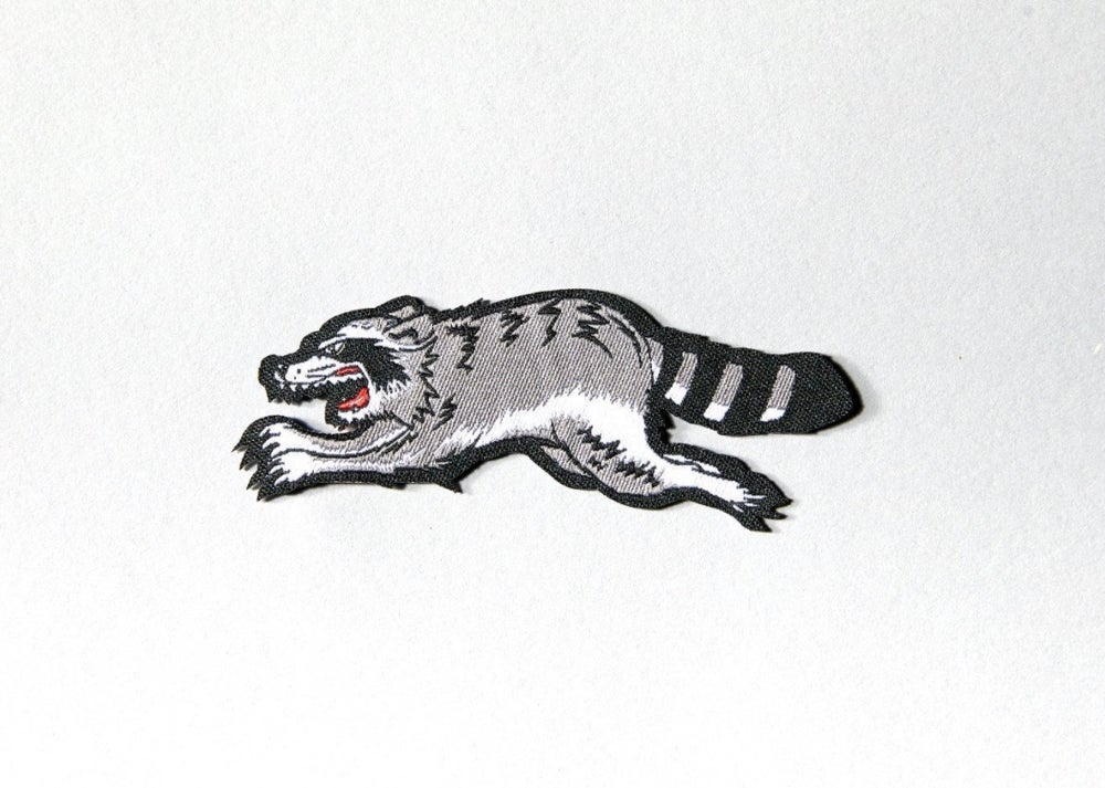 Image of Trash Cat embroidered patch