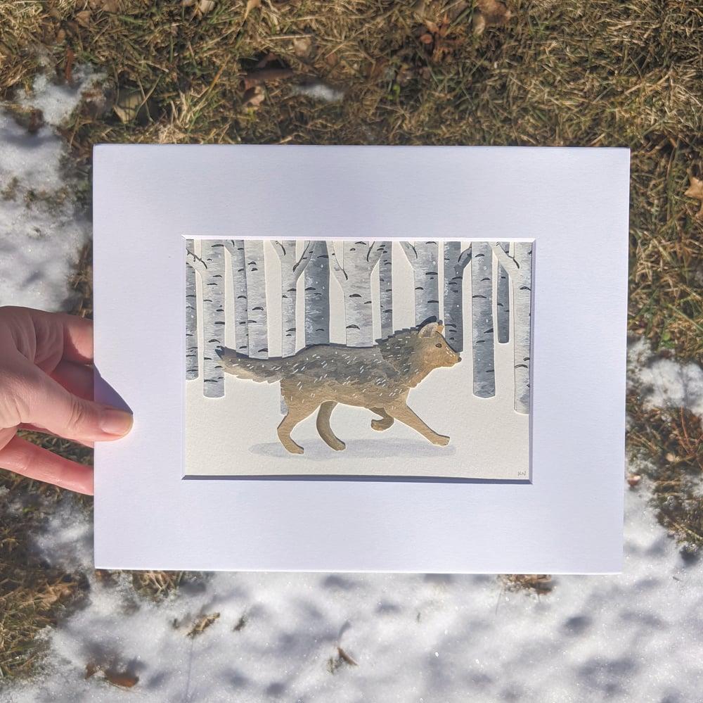 Image of Winter wolf