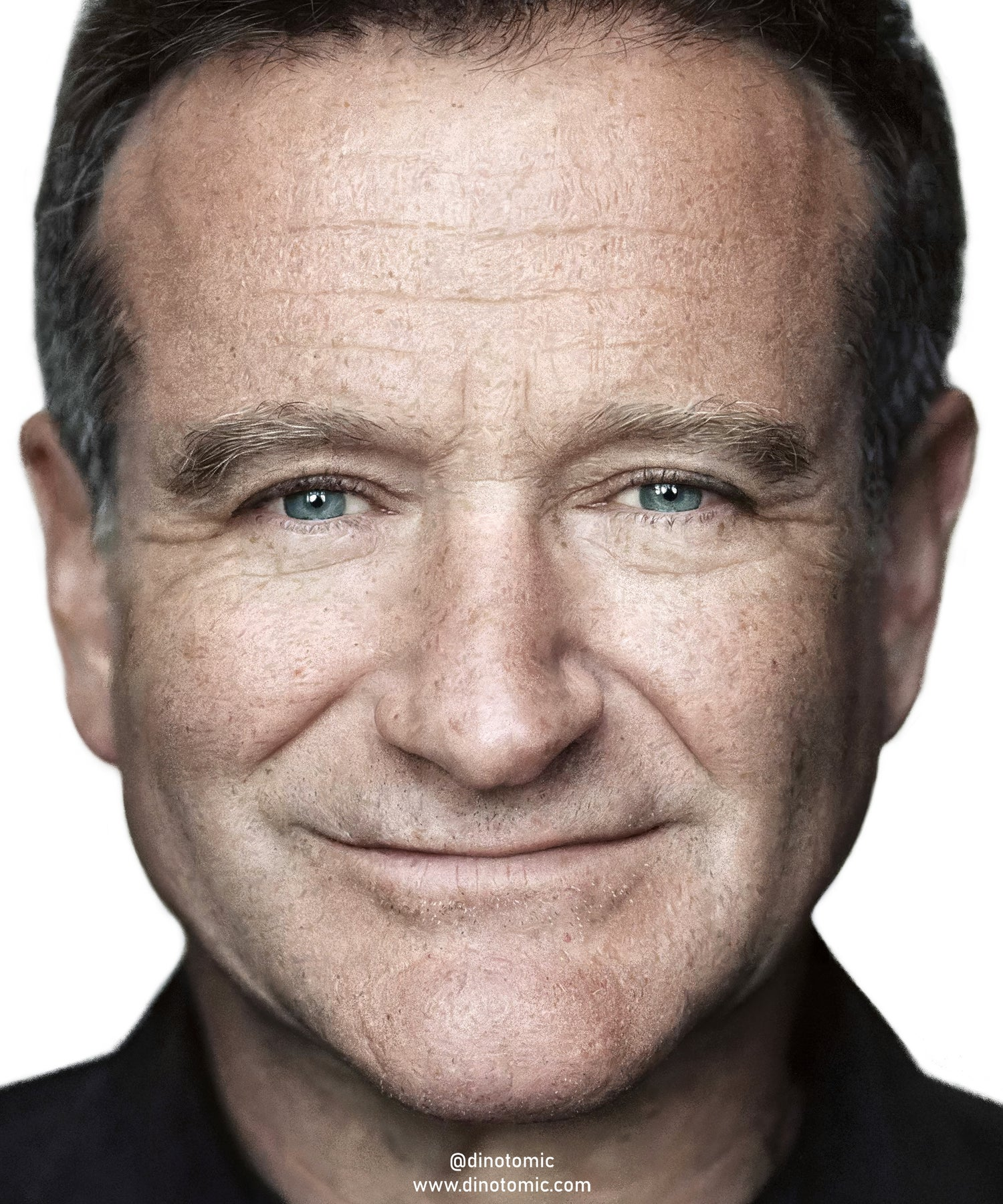 Image of #291 Robin Williams realistic painting