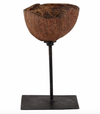 Coconut Shell on a Stand