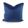 Velvet Throw Pillow (Blue)
