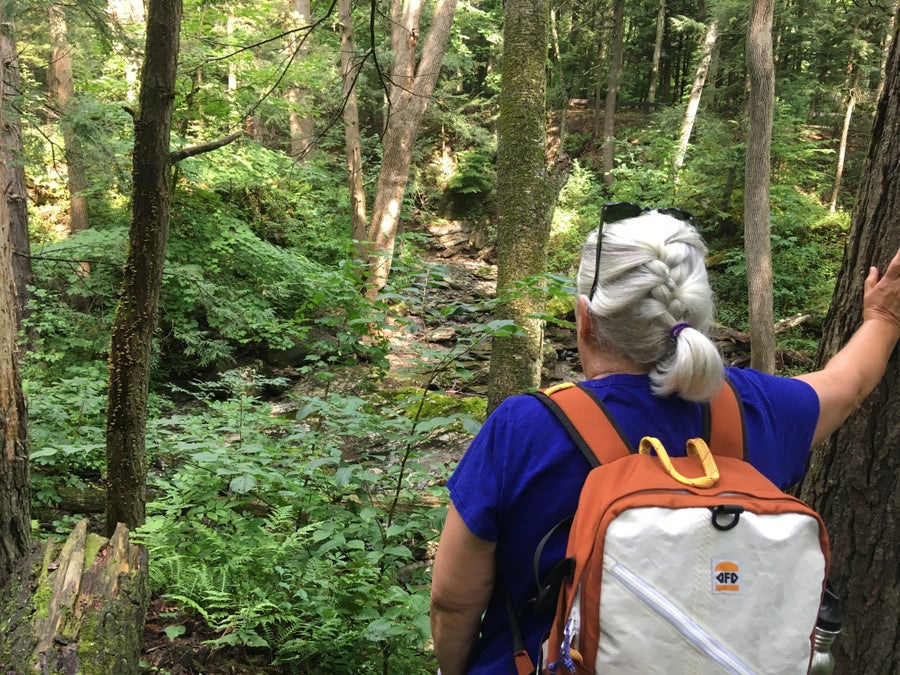Image of South Platte Daypack