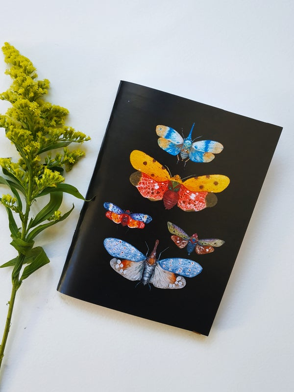 Image of Insect print bullet journal, Entomology, Black notebook with bugs, small hiking notebook.