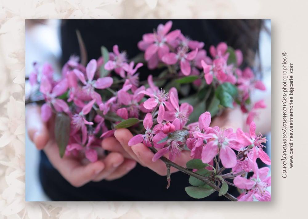 Image of Brassée de fleurs | carte postale
