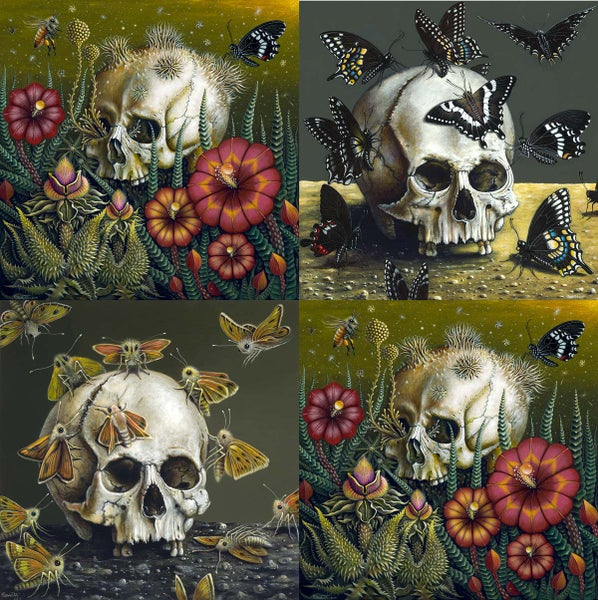 "Image of SKULL ""MORTE""  SERIES COLLECTION • ALL 3  SOLD TOGETHER"