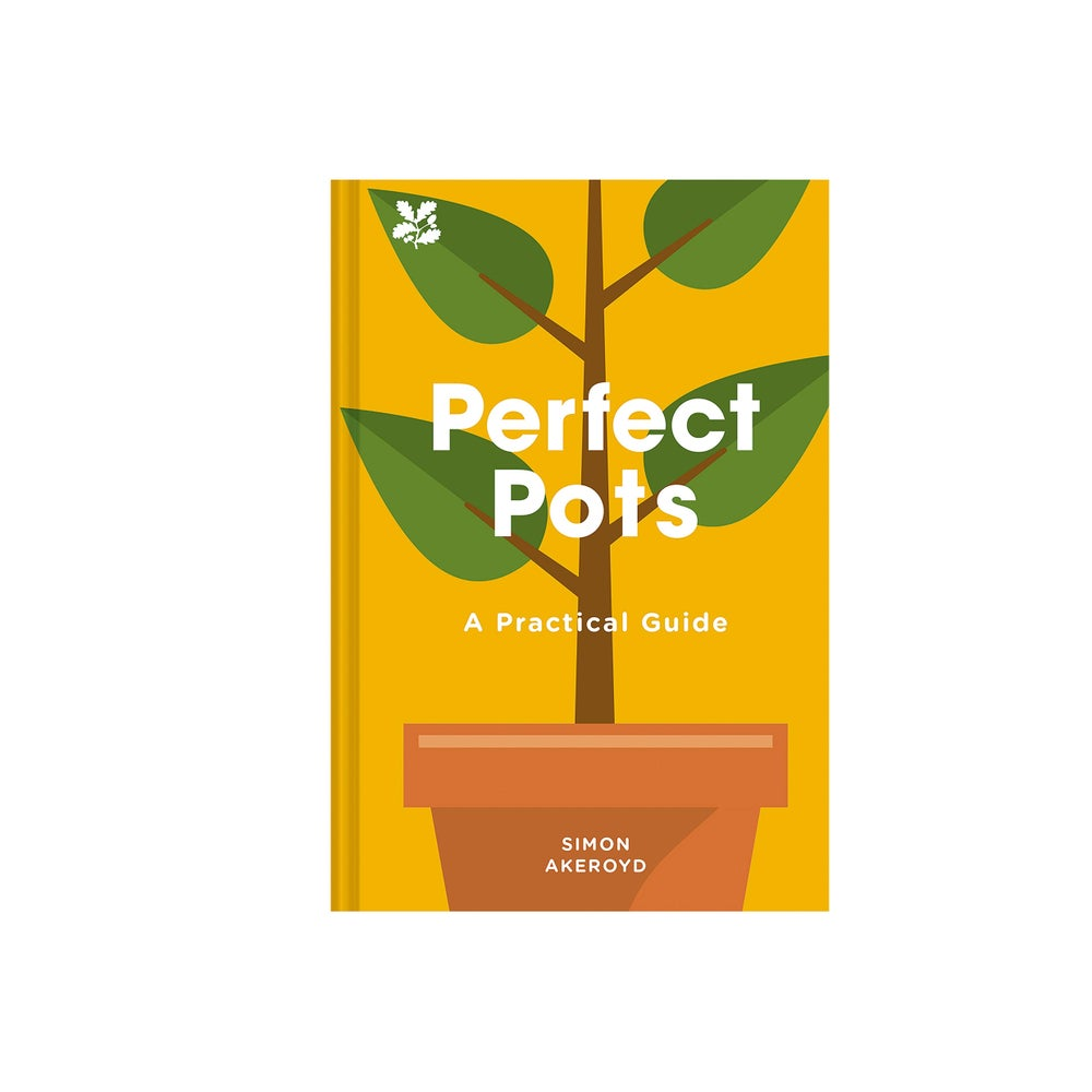 Image of Perfect Pots: A Practical Guide