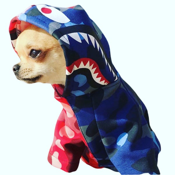 "Image of Dogs5thAvenue Bape ""Doggie"" Hoody (red/blue)"