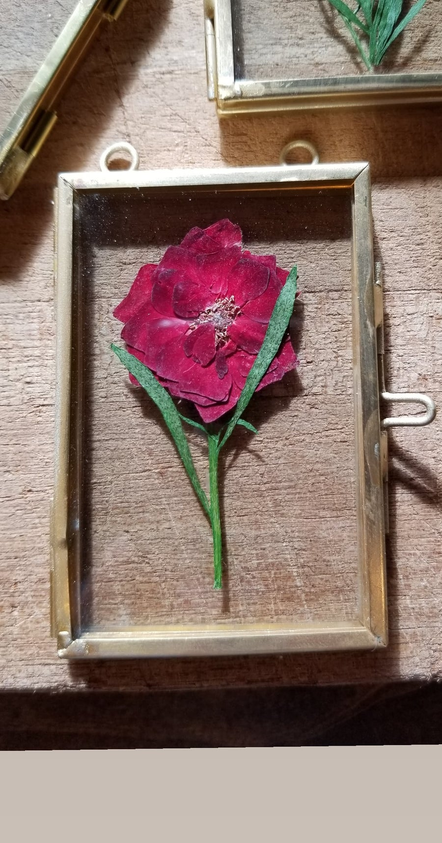 Image of Pressed Flowers/Brass frames
