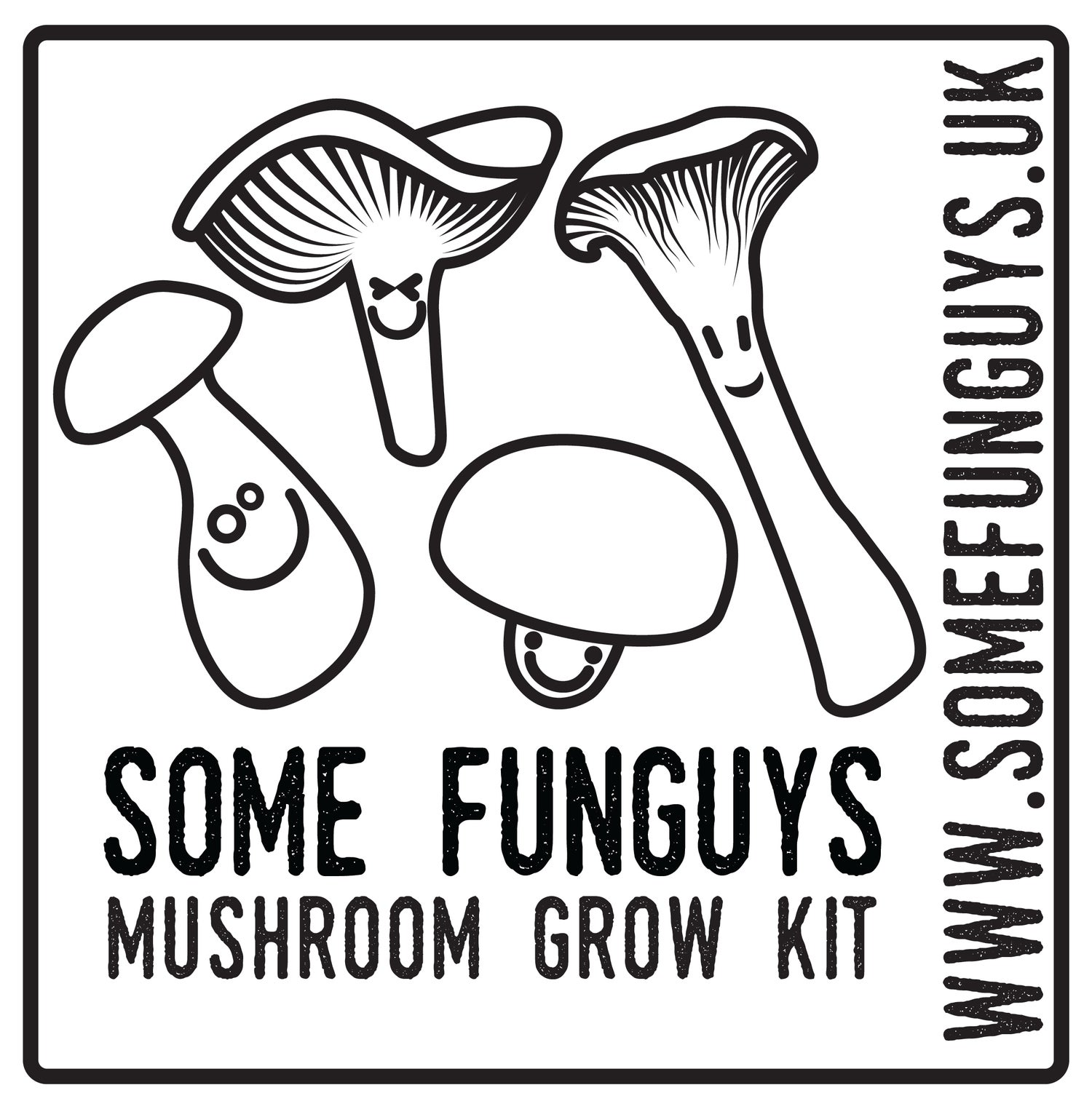 Image of Double up! Two gourmet mushroom grow at-home kits