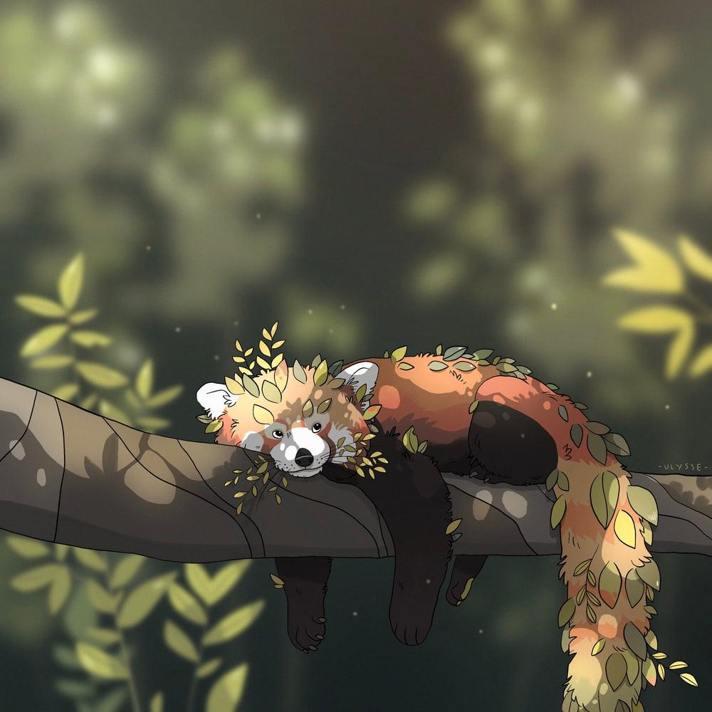 Image of Leafy red panda - Mini print