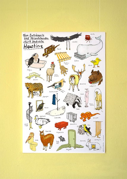 Image of Hausbautiere   Kleines Poster  DIN A2
