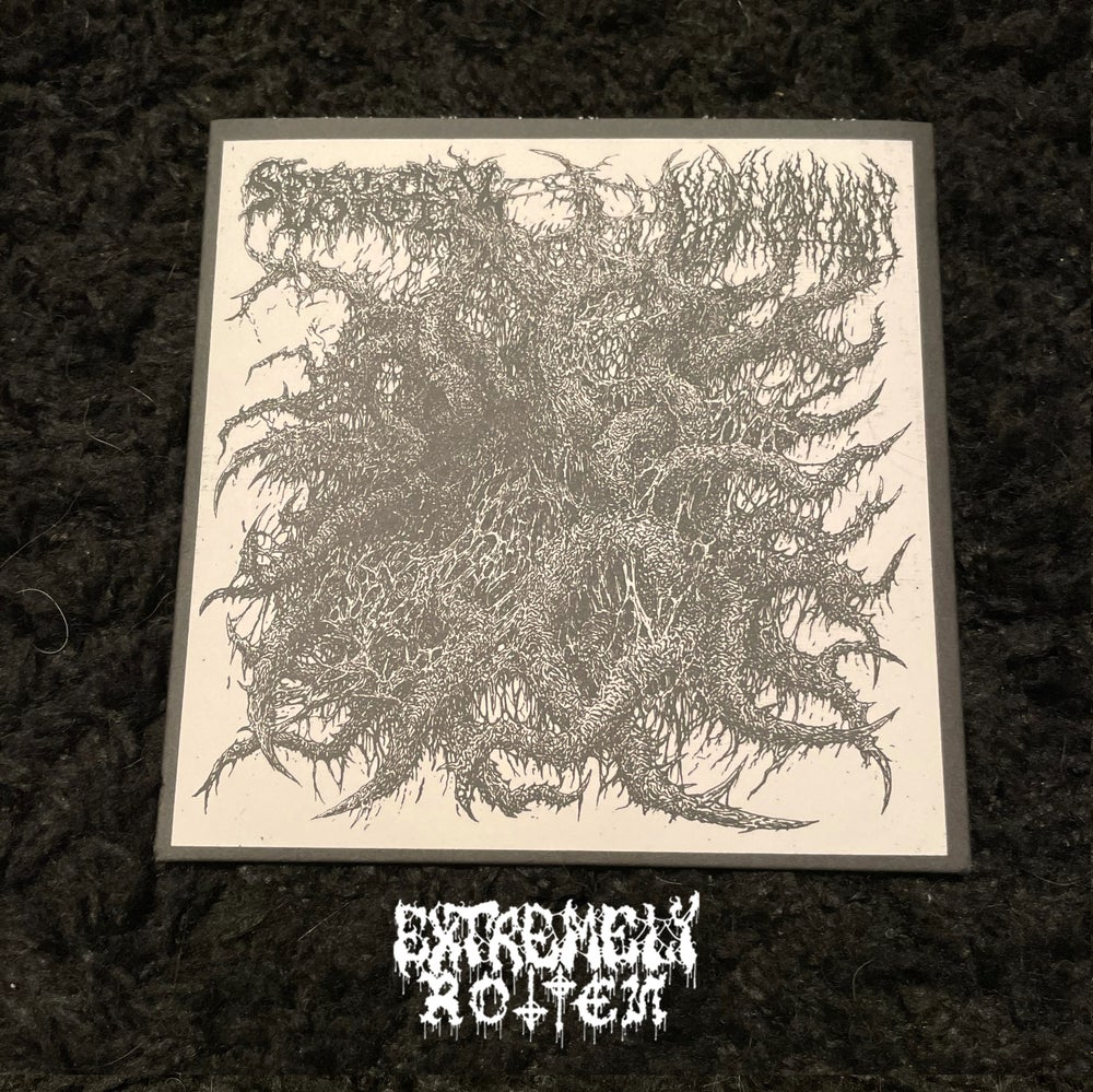 Image of EXTREMELY ROTTEN PRODUCTIONS PRESS - SPECTRAL VOICE / BLOOD INCANTATION Split 7""