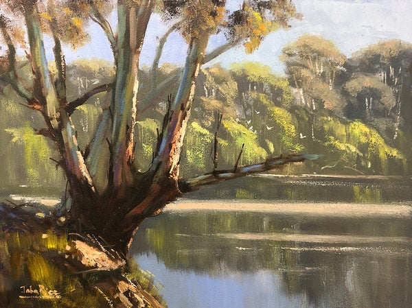 Image of Late In The Day, Macquarie River