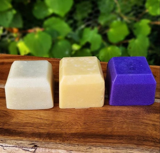 Image of Shampoo and Conditioner Bars