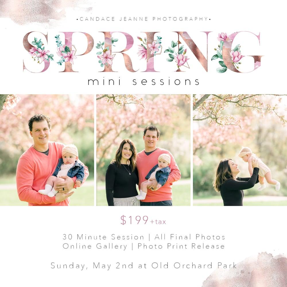 Image of Spring Minis
