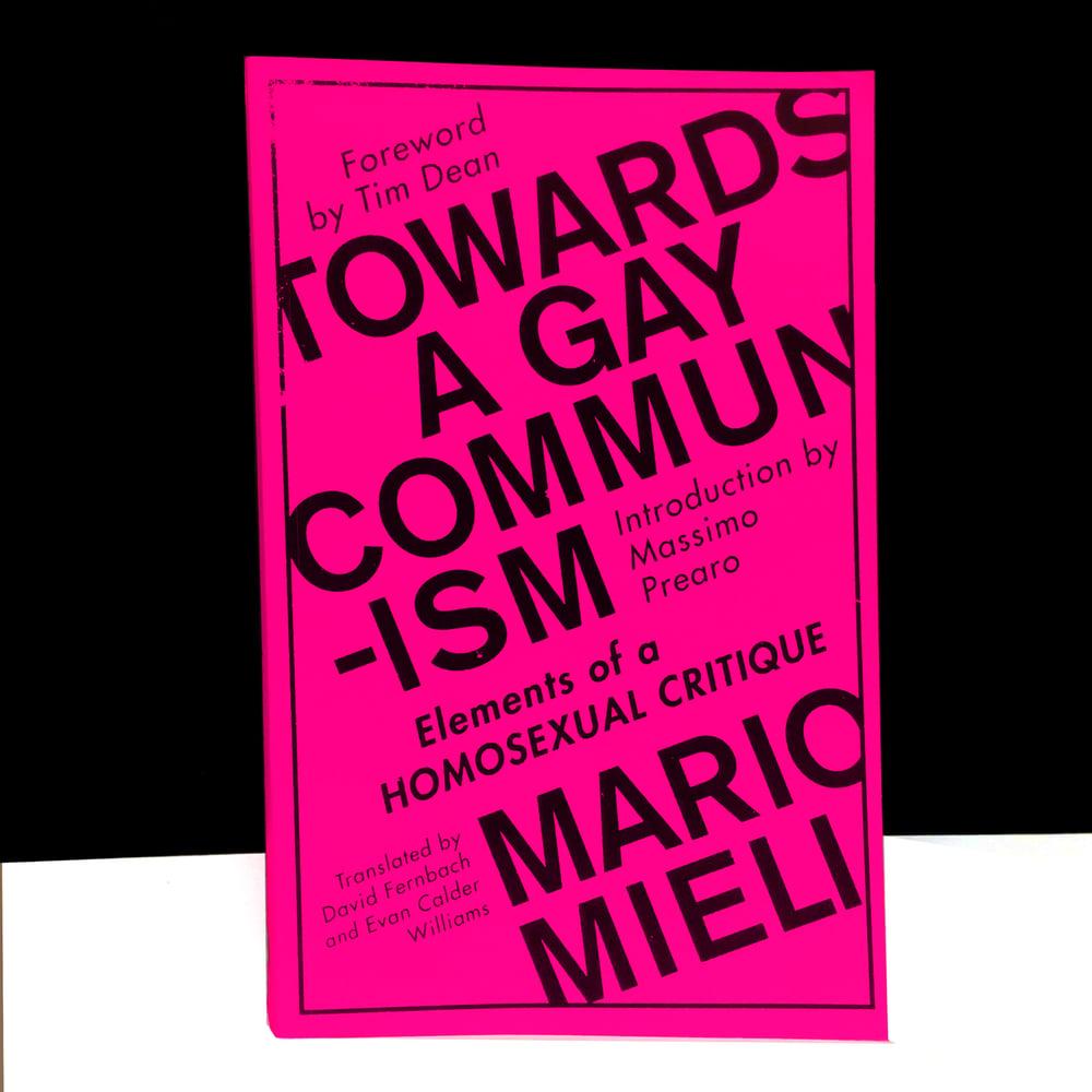 Towards a Gay Communism : Elements of a Homosexual Critique