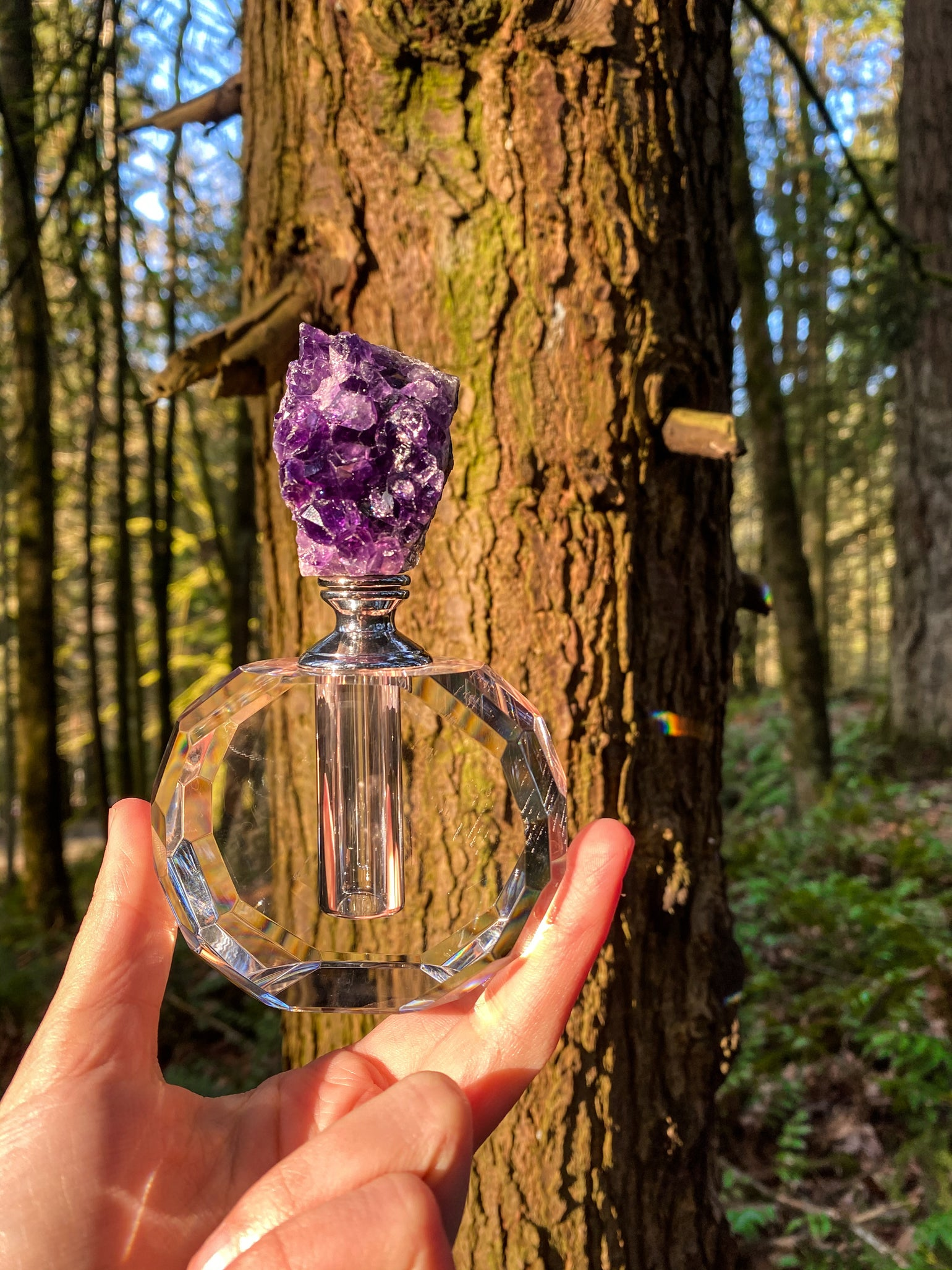 Image of candied pears luxury perfume