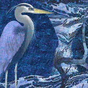 Image of Indigo Heron
