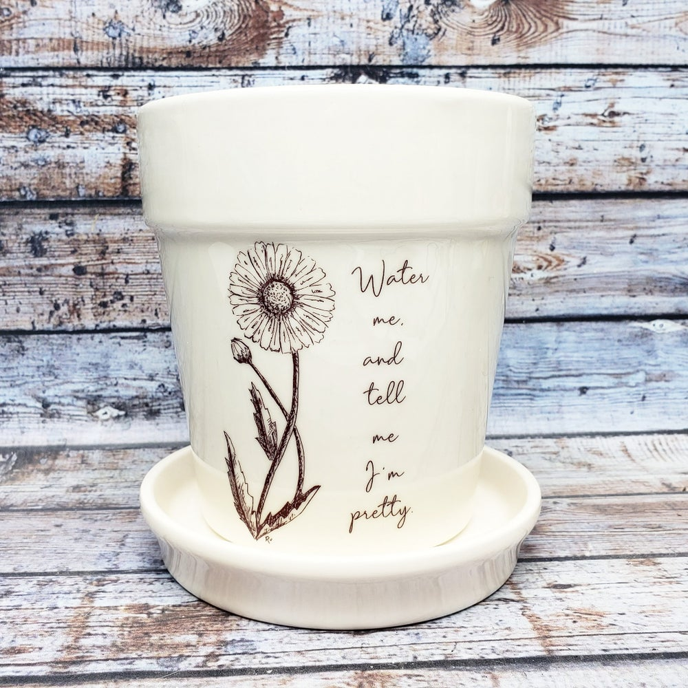"""Image of Indoor Ceramic Planter with original sketch """"Water me and tell me I'm pretty."""""""