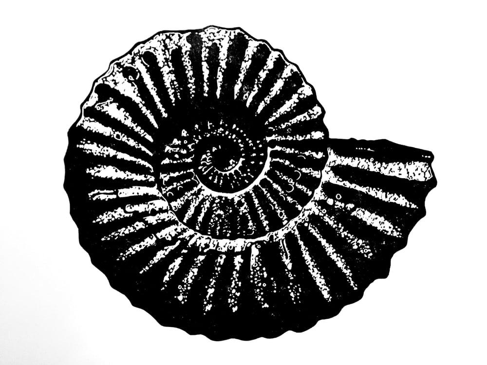 Ammonite - single colour linocut print