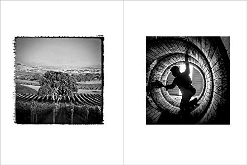 Image of Vineyards: Photographs by Fred Lyon