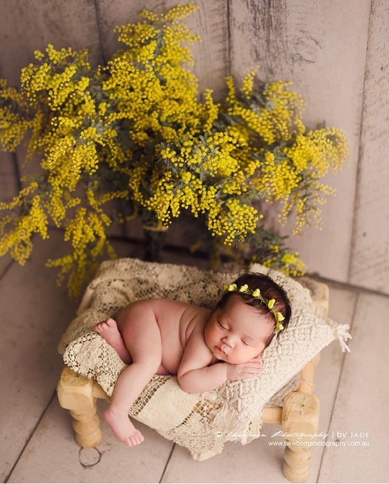 Image of Eleanor (yellow)