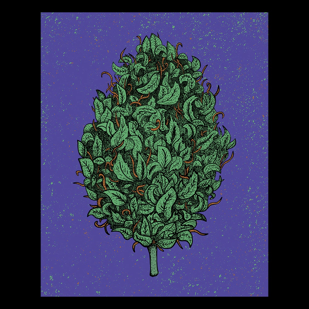 "Image of ""The Big One"" - Giant Nug Poster"