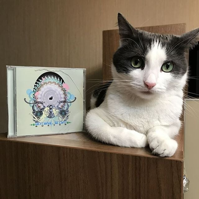 Admiral Angry 'Buster' - CD