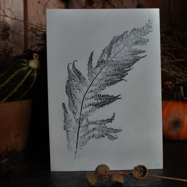 Image of Fern Card