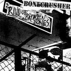Image of Blvd of Broken Bones