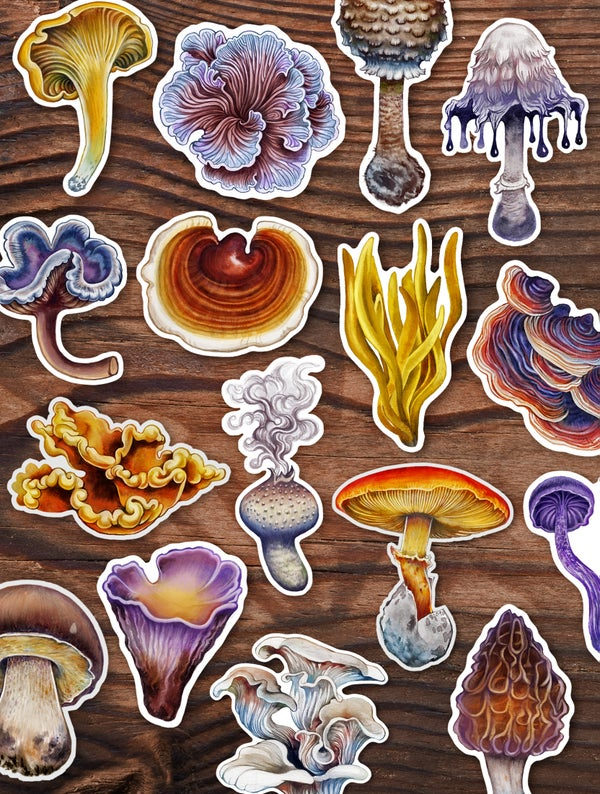 Image of THE FUNGI STICKER SET
