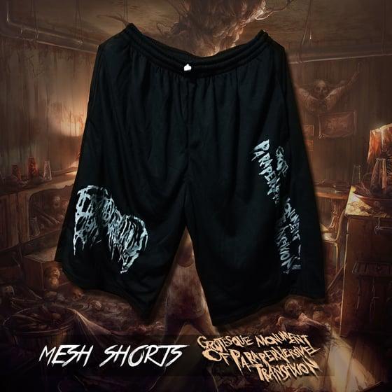 Image of Epicardiectomy mesh shorts
