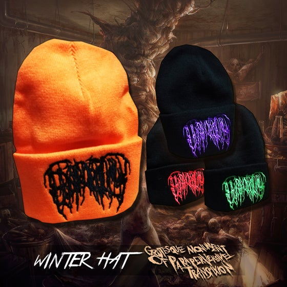 Image of Epicardiectomy winter hat